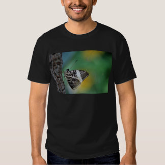 Black and White Tiger Butterfly T Shirt