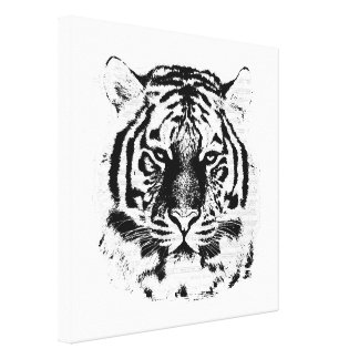 Black and White Tiger Face Close Up Canvas Print