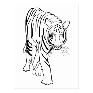 Black and White Tiger Made of Lines Facing Forward Postcard