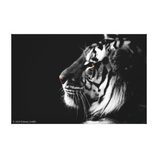 Black and White Tiger Wrapped Canvas Gallery Wrap Canvas