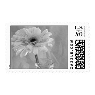Black and White Tint Daisy Postage