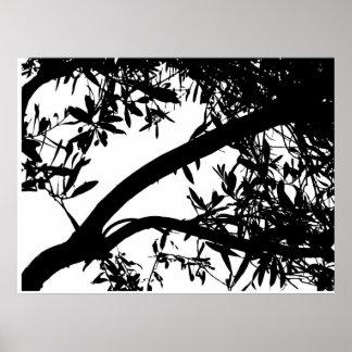 Black and White Tree Art Poster