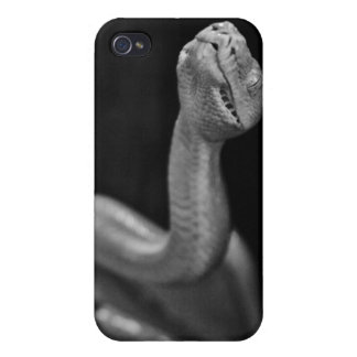Black and White Tree Boa Case For iPhone 4
