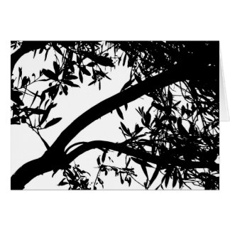 Black and White Tree Card