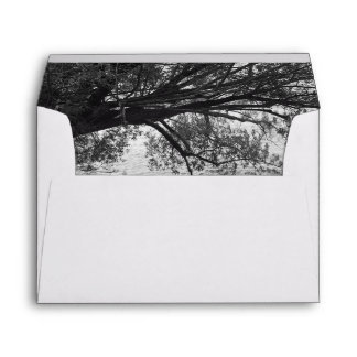 Black and White Tree Silhouette Envelope