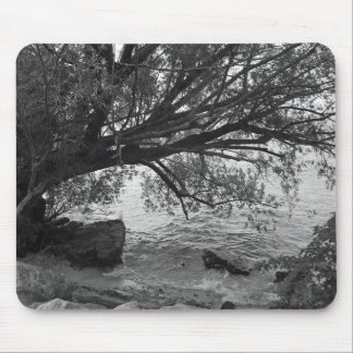 Black and White Tree Silhouette Mouse Pads