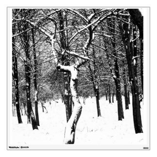 Black and white, trees and snow wall sticker