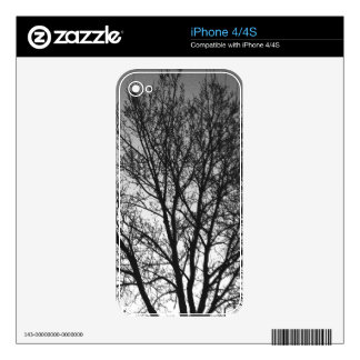 Black and White Trees iPhone 4 Decal