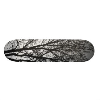 Black and White Trees Skate Decks