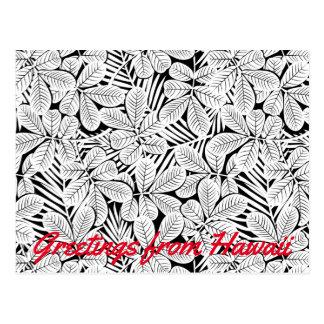 Black and white tropical plants postcard