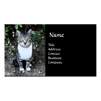 BLACK AND WHITE TURKISH CAT RONIN BUSINESS CARD