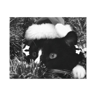 Black and white tuxedo cat christmas hat tinsel bw stretched canvas prints
