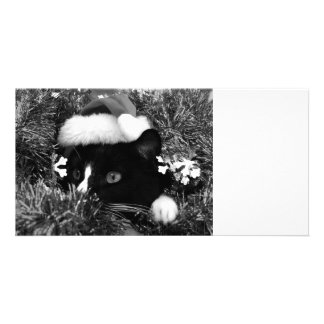 Black and white tuxedo cat christmas hat tinsel bw personalized photo card