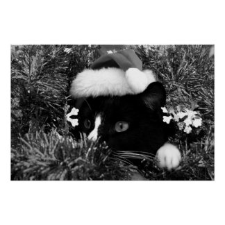 Black and white tuxedo cat christmas hat tinsel bw posters