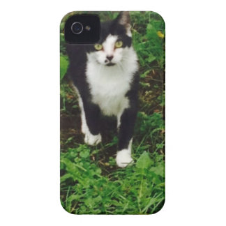 Black and white tuxedo cat in the green grass Case-Mate iPhone 4 case