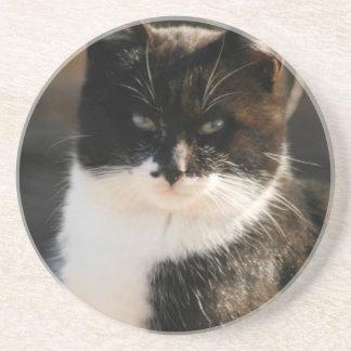 Black and White Tuxedo Kitty Drink Coasters