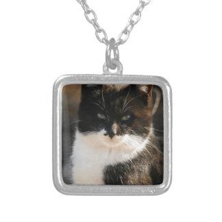 Black and White Tuxedo Kitty Jewelry