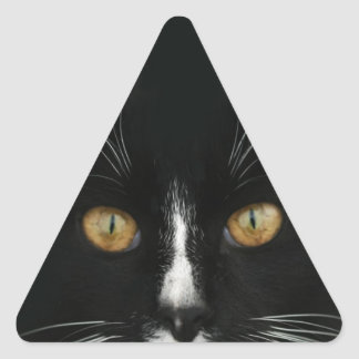 Black and White Tuxedo Kitty With Golden Eyes Triangle Sticker