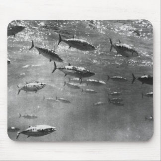 Black and White underwater photograph of Tunas Mouse Pad