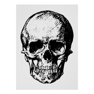 Black and White Vintage Skull Illustration Poster