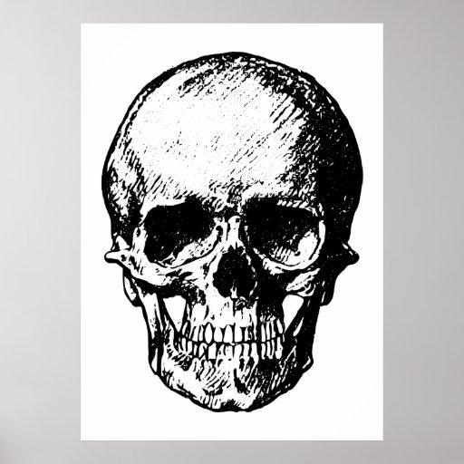 Black and White Vintage Skull Illustration Print