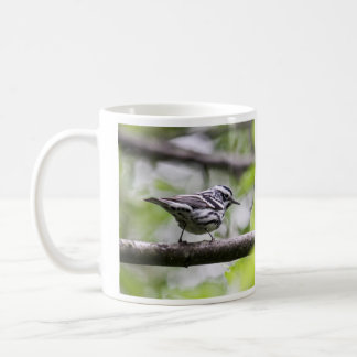Black-and-white Warbler Classic White Coffee Mug