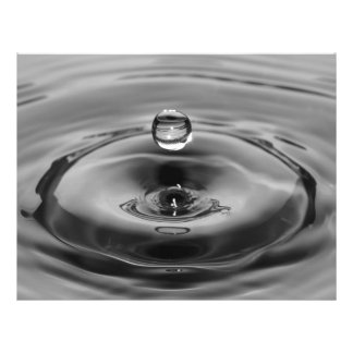 """Black and white water drop close up 8.5"""" x 11"""" flyer"""