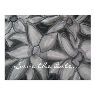 Black and White Water Lillies Postcard