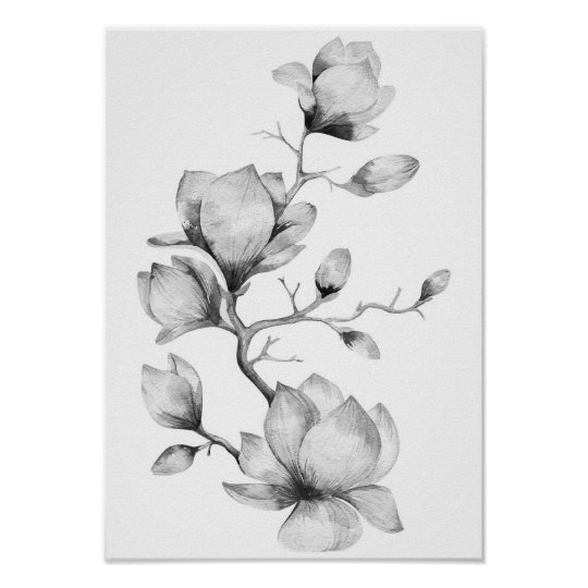 Black and white watercolor flowers wall art poster | Zazzle.com