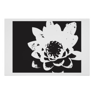black and white waterlily poster