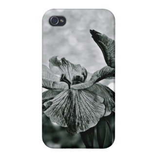 BLACK AND WHITE WHIMSICAL IRIS FLOWERS CASE FOR iPhone 4