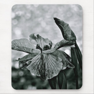 BLACK AND WHITE WHIMSICAL IRIS FLOWERS MOUSE PAD
