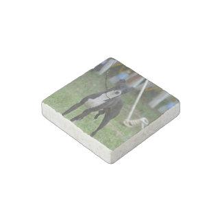 Black and White Whippet Stone Magnet