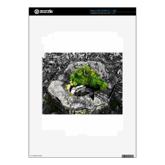 black and white with a touch of green decals for the iPad 2