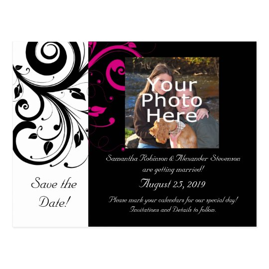 Black and White with Magenta Swirl Accent Postcard
