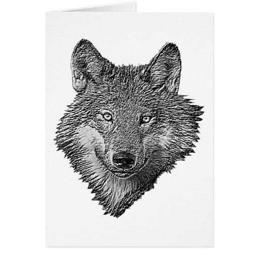 Black and White Wolf Card