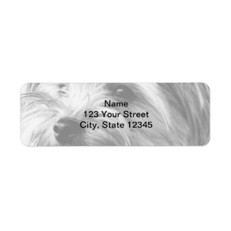 Black and White Yorkshire Terrier Return Address Label