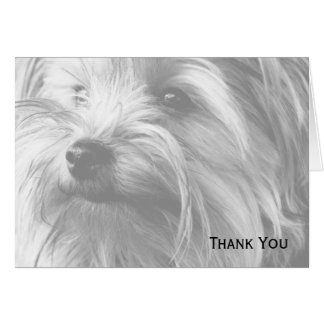 Black and White Yorkshire Terrier Yorkie Card