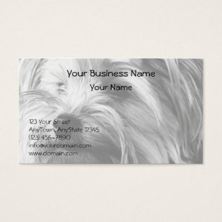 Black and White Yorkshire Terrier Yorkie Portrait Business Card