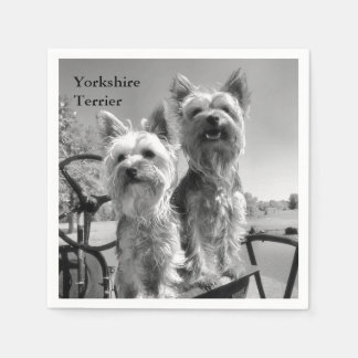 Black and White Yorkshire Terriers Napkin