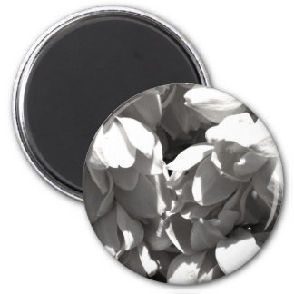 black and white yucca lillies 2 inch round magnet