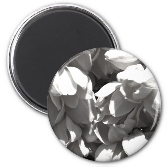 black and white yucca lillies magnet