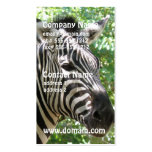 Black and White Zebra Business Cards