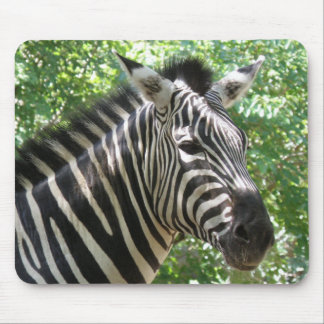 Black and White Zebra Mouse Pad