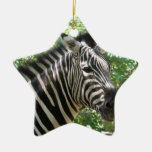 Black and White Zebra Ornament