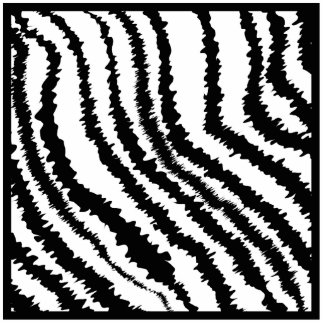 Black and White Zebra Print Pattern. Photo Cut Outs