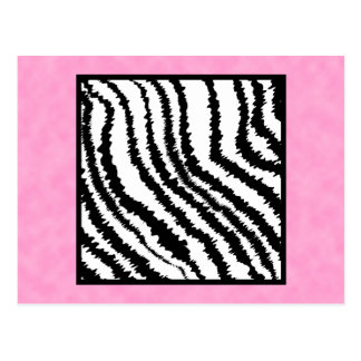 Black and White Zebra Print Pattern. Postcard