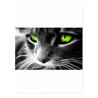 Black and Whiten Cat Face with Green eyes Postcard