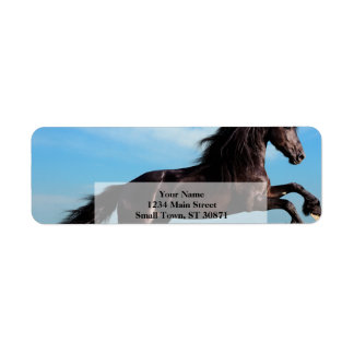 black and wild Stallion Rearing Horse Label