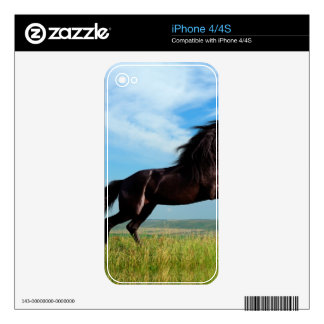 black and wild Stallion Rearing Horse Skin For iPhone 4
